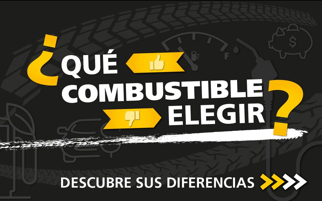 flota_respetuosa_autoescuela_gala